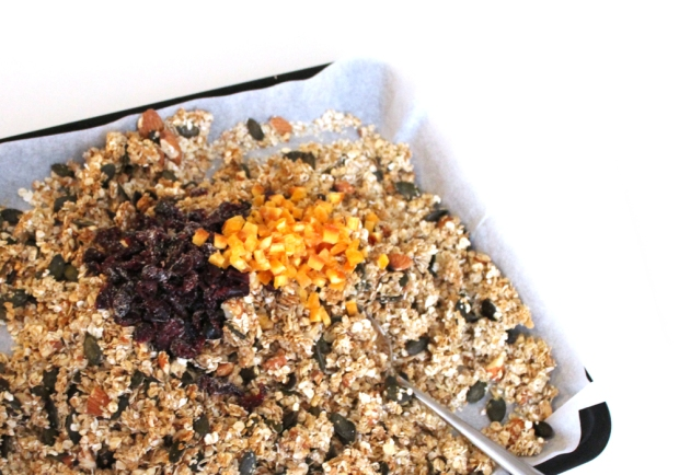 granola-orange-cramberries copie